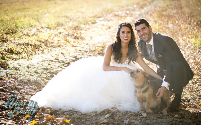 fotografo boda logroño la rioja